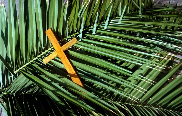 a palm and a cross